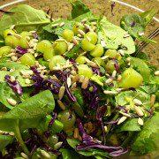spinach broccoli grape salad